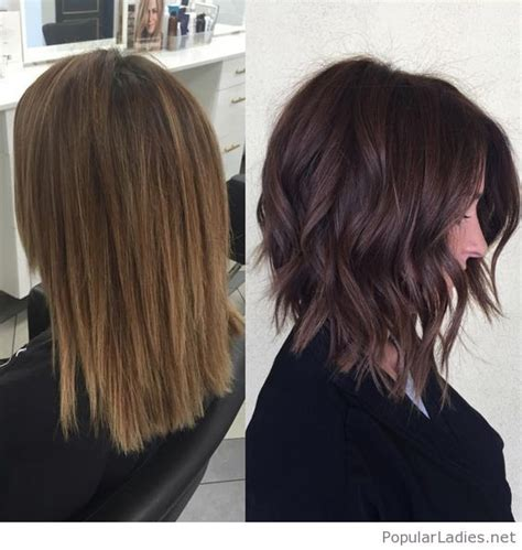 rich brown bob hair styles amazing dark rich brown chopped hair hair colors styles