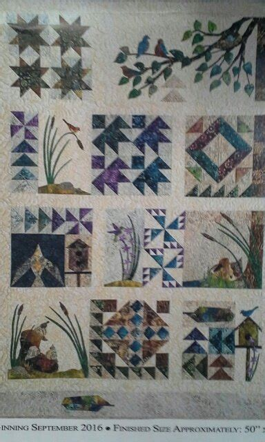 Cottonwood Quilt Shop by Bird Walk Or River Rock Block Of The Month