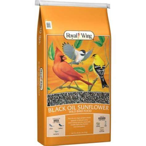 black sunflower seed tractor supply royal wing black sunflower bird food 40 lb