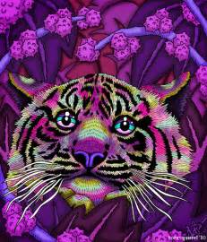 colorful tiger photo