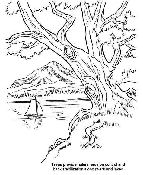 coloring page of a river arbor day coloring pages riverbank trees coloring pages