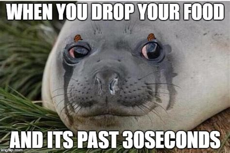 Seal Meme Generator - sad seal meme www pixshark com images galleries with a
