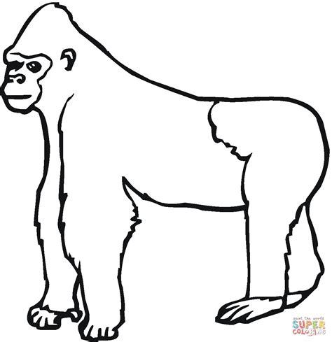 gorilla colors dibujo de gorila mirando hacia la izquierda para colorear
