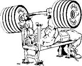 newton bench press juicedmuscle