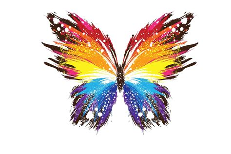 colorful butterfly colorful butterfly wallpapers 6 free hd wallpaper
