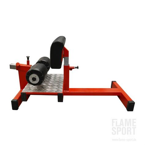 sa gear bench sissy squat bench 1s flame sport flame sport