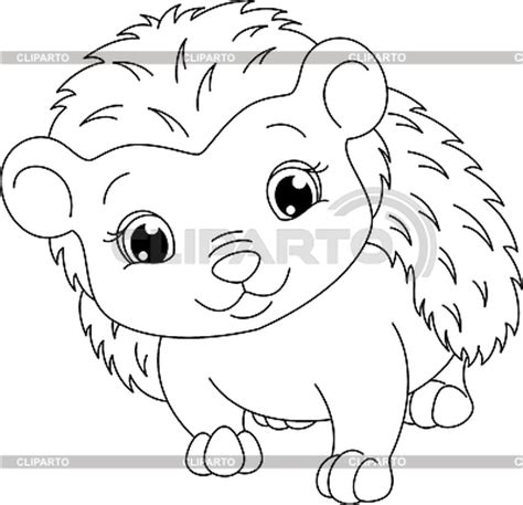 cute hedgehog coloring pages stock images by platinka photos illustrations