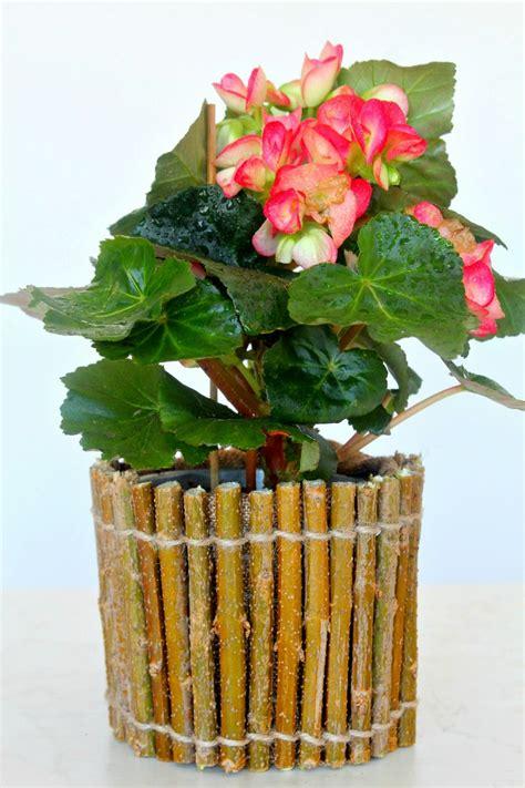 twig flower pot fun family crafts