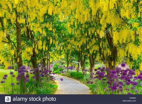 vandusen botanical garden hours vancouver botanical garden vandusen botanical garden in