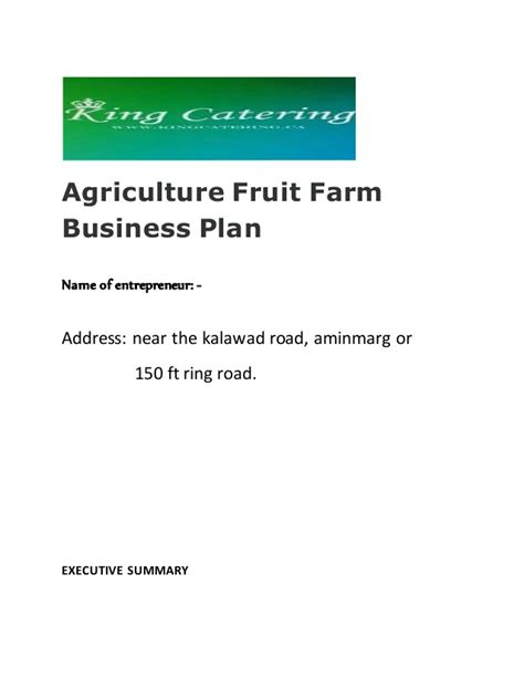 king catering business plan