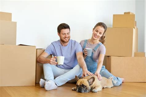moving to a new house with a dog happy couple with boxes and dog moving to new home stock photo image of apartment drink
