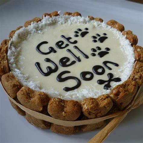 get well soon puppy get well soon cake by doggie patisserie notonthehighstreet
