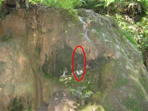 la statua della vergine di lourdes al centro sparita la statua della vergine collocata in una grotta