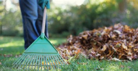 how to clean backyard spring cleaning backyard checklist patio productions