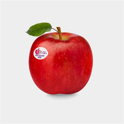apple new zealand introducing diva mr apple new zealand apple suppliers