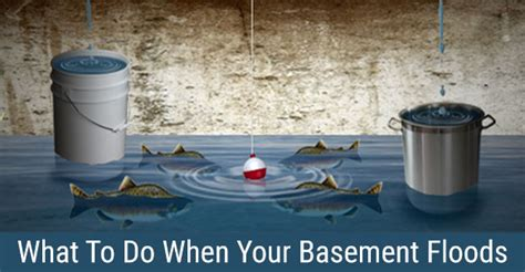 what to do if your basement floods basement flooded we solutions