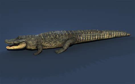 Original One Effect Crocodile Bib aligator alligator 3d max