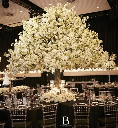 tree decorators for hire 4m white cherry blossom tree harbourside decorators