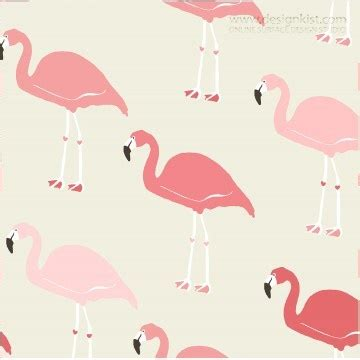 pink flamingo wallpaper australia 29 best personal i love flamingos images on pinterest