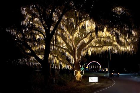 South Carolina Christmas Christmas Celebrations In South Charleston Lights