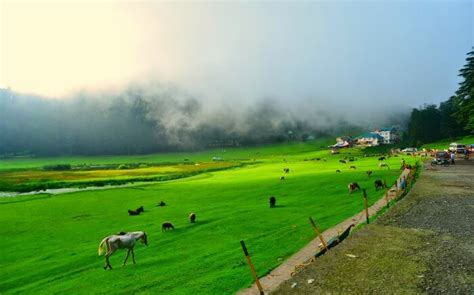 places  visit  dharamshala   lovely detour