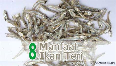 Ikan Asin Jambrong Dan Ikan Teri 8 manfaat ikan teri untuk kesehatan efek singnya khasiat sehat