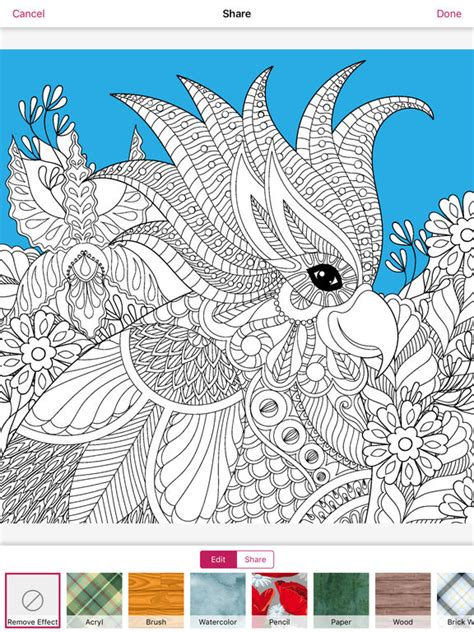 stress less coloring book 30 intricate detail page mandalas for coloring in for relaxation and stress relief books app shopper coloring book color therapy free for