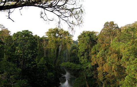 situs warisan dunia unesco  indonesia