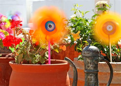 sabas cules son las palabras ms raras del castellano flores bonitas para jardin esta son nuestras sugerencias