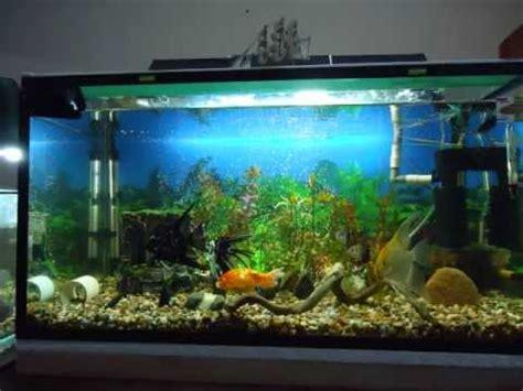 iluminacion de peceras iluminaci 243 n para acuario