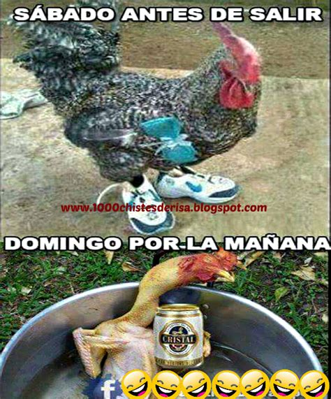 imagenes graciosas divertidas de borrachos imagenes chistosas para borrachos sabado y domingo