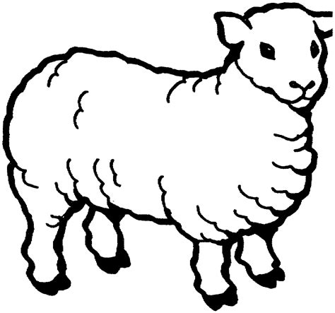 coloring page of a sheep image
