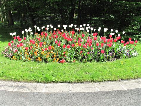 how to create a flower bed file flower bed vaires d1305 jpg wikimedia commons