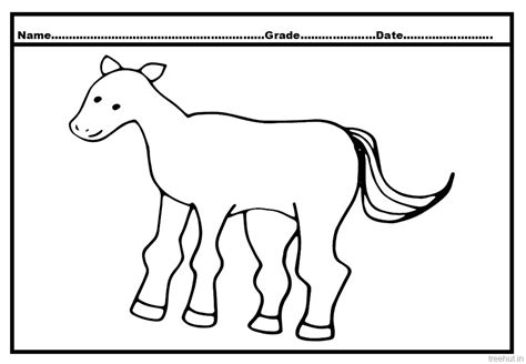 coloring pages of horses and foals and foal coloring pages