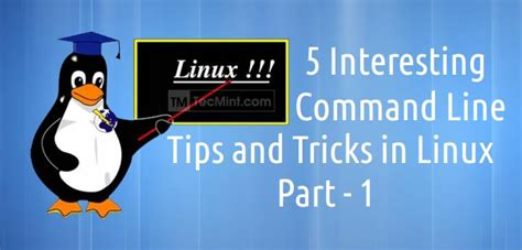 linux tips and tricks to execute linux programming volume 2 books how to run sudo command without entering a password in linux
