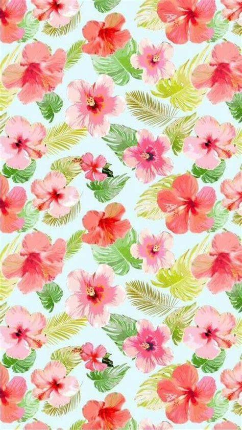imágenes de flores wallpapers image de flores fondo de pantalla and walpaper fondos
