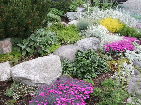 large rocks for gardens perennials for rock gardens plants gardens