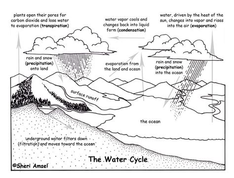 water cycle coloring page pdf water cycle