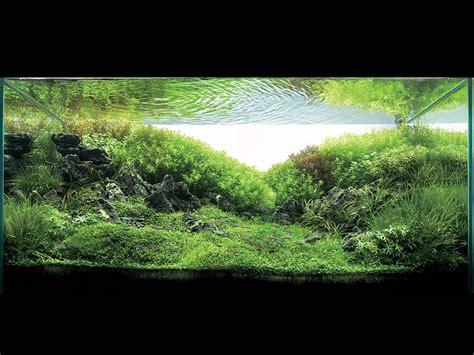 Aquascape Light by Aquatic Aquascaping Aquarium