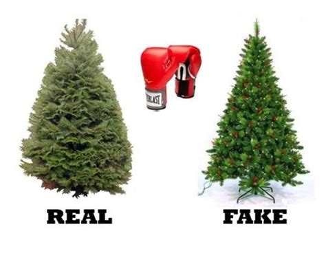 real christmas trees vs fake christmas trees which are