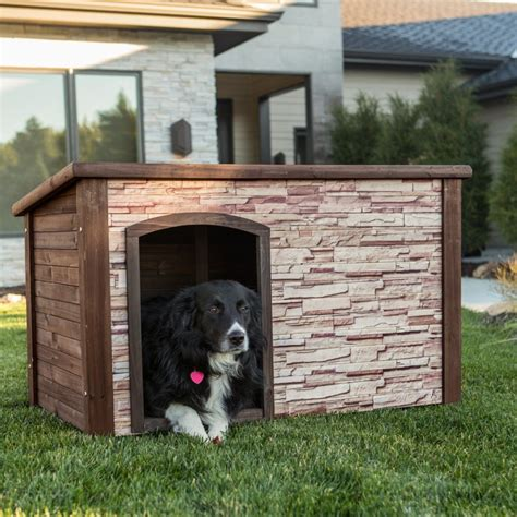 good dog house 34 doggone good backyard dog house ideas