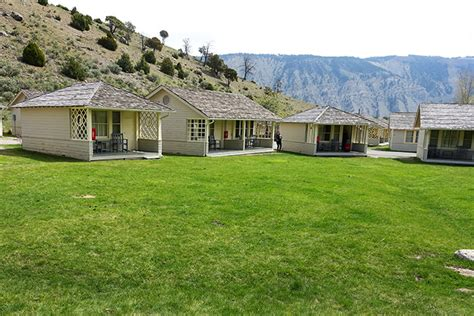 Mammoth Cabin by Observe The Wildlife At Yellowstone S Mammoth Springs