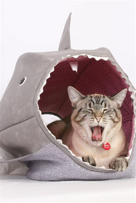 shark bed for cats great white shark cat ball kitty bed to be cats and sharks