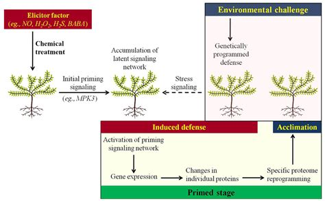 frontiers priming against environmental challenges and
