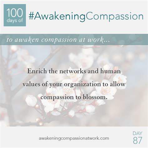 the compassionate organization and the who to work for them books 100 days of awakening compassion week 13 archive