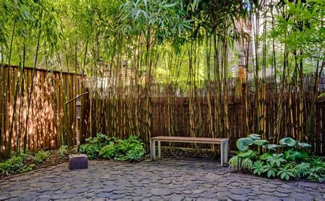 bamboo backyard bamboo screen with cobblestone emgd pinterest