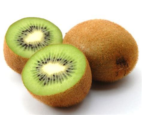 Bibit Tanaman Buah Persik tanaman buah persik daftar update harga terbaru dan