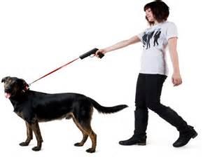 Home Design Vendita Online guinzaglio a strozzo per il tuo cane no grazie meglio a
