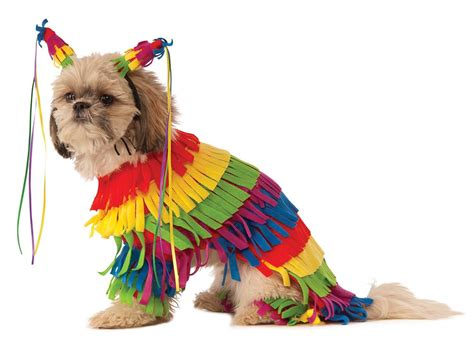 puppy pinata top 20 best costumes for in 2017 heavy