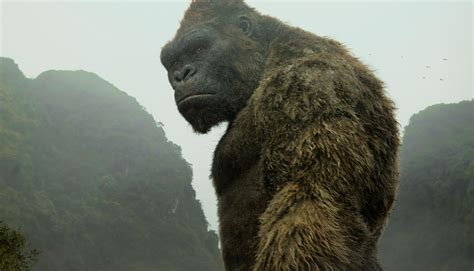 searching for an my hometown lehighton pa books kong skull island review